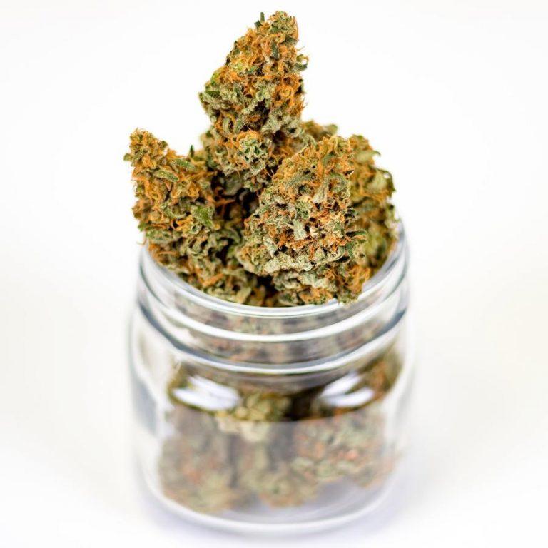 Godne polecenia rozwiązania przeznaczone do hodowli marihuany